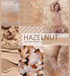 Hazelnut pantone color trend for spring 2017