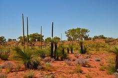 Gibson Desert. Located in Central Australia. Oceania.