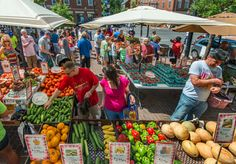 Find free, fun activities for the whole family in Alexandria, Virginia from Mount Vernon Trail to the Old Town Farmers Market. Plan your trip today. Alexandria Park, Old Town Alexandria, Alexandria Virginia, Mount Vernon Trail, Meadow Garden, Non Organic, Free Things To Do, Gras, Farmers Market