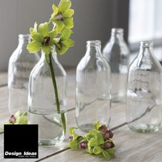 Shop: Design Ideas. Table decor + kitchen essentials fit for any occasion.