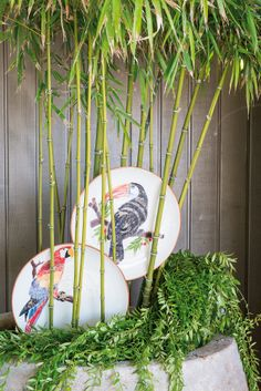 Greenhouse Club Tropicana, Summer Paradise, Hanging Chair, Indoor, Birds, Plate, Paintings, Decoration, Home Decor