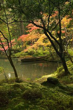 Beautiful pond in the forest posted by Enigma on Facebook