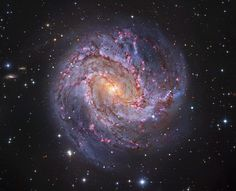 "the-wolf-and-moon: "" M83, Galaxy of One Thousand Rubies """