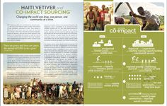 Co-Impact Sourcing, Vetiver, Haiti,  with dōTERRA Essential Oils