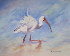 #Ibis #Seashore #Bird #Watercolor #Painting #Ocean #Beach #Vacation #Home #Decor #Art #Gift © 2012 by Barbara Rosenzweig, matted art print 16x20 $48.00 Free Shipping US - other sizes available Etsy.