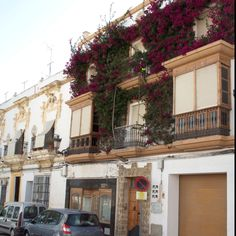 I want to live in Rota, Spain