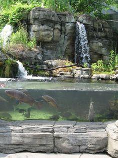 randuwa: PPG Aquarium (@ Pittsburgh Zoo)