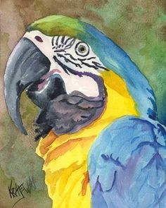 Macaw Art Print of Original Watercolor Painting Watercolor Bird, Watercolor Animals, Watercolor Paintings, Painting & Drawing, Parrot Painting, Contemporary Abstract Art, Tropical Art, Bird Art, Animal Paintings