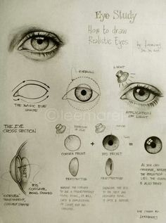 How to draw realistic eyes. #draw #eyes | Art Art Art! | Pinterest