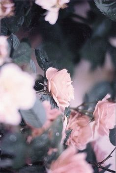 (via Stylistic Kosilala: pink.mood.)