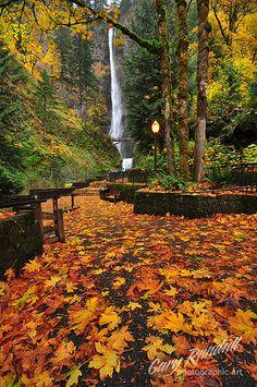 Adoro essas paisagens de outono! ;)
