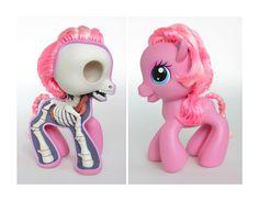 Pony Sculpt Dissection Print