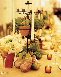 A single long table seats all 70 guests; colorful fruit and vegetables grace its center.
