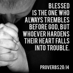 Hope for the Hard Heart- Max Lucado Proverbs 28:14