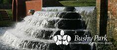 Bushy Park - Park