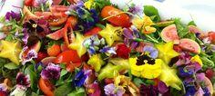 O sucesso registado com as três edições do ateliê de flores comestíveis levou o Museu do Oriente a criar uma quarta edição da iniciativa, no dia 4 de maio.