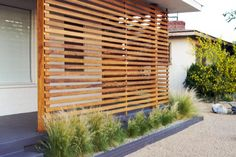 Frontyard - Mexican Feather Grass
