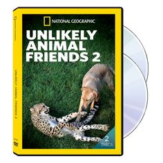 Unlikely Animal Friends Two 2-DVD Set   National Geographic Store