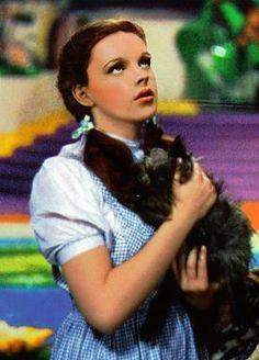 The Wizard of Oz - Judy Garland Photo (535485) - Fanpop