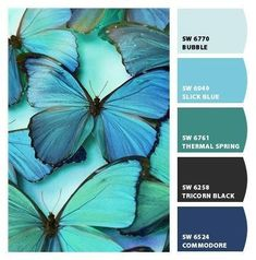 Instantly turn any picture into a palette with ColorSnap, created for you by Sherwin-Williams. Color Schemes Colour Palettes, Colour Pallette, Color Palate, Color Combinations, Decoration Palette, Pinterest Instagram, Design Seeds, Color Swatches, House Painting
