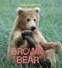 """Children's Book, """"Eye on the Wild"""" ⎯ Brown Bear"""