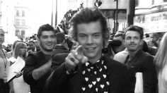 Click here to see what it's really like being a twenty-something fan of Harry Styles!