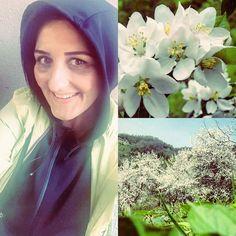 Gün başlıyor sağlıklımutlu ve huzurlu çiçek gibi bir gün olsunçok şükür  #günaydın #bahar #baharçiçekleri #sağlık #mutluluk #huzur #şükür by ozanozlem