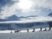 National Geographic Channel: Ultimate Survival Alaska