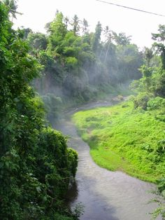 Ayung River, Ubud Bali - Indonesia - river energy to prepare me for passover Asia Cruise, Garden Of Eden, Image Of The Day, Ubud, Rafting, Touring, Places Ive Been, Country Roads, Journey