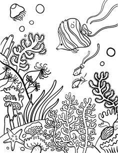 Printable coral reef coloring page. Free PDF download at http://coloringcafe.com/coloring-pages/coral-reef/