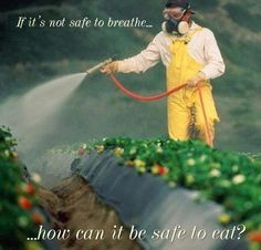 Thanx, monsanto, for geneticaly altering our food