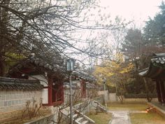 Gumi,south korea 채선정