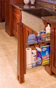 Arts & Crafts; Crown Point Cabinetry; instead of one open space under sink? stores cleaning products