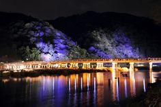 橋 ライトアップ - Google 検索