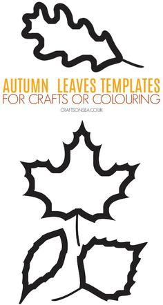 autumn leaf template free printables.html