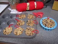 Bird Seed Cakes .It uses 3 cups of bird seed and 1 oz. of powdered gelatin (with 1 cup boiling water).