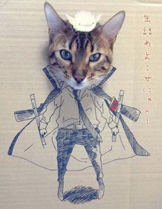 Vous aimez les chats et les super-héros ? Alors cet article est fait pour vous. Nous devons ces cosplays en carton à une blogueuse chinoise, toshiya86. Afin de célébrer l'anniversaire de son chat Guagua, elle a décidé de créer cette série de portraits en mode minou cosplay. Personnellement, …