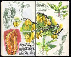 30 by Sketchbuch, via Flickr
