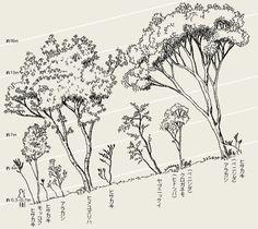 図:種組成と階層構造