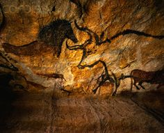 paleolithic cave paintings - Google Search