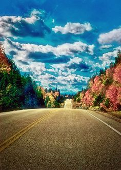 Highway 60 through Algonquin Park, Ontario - (CC)StoneHorse Studios… Ontario, O Canada, Canada Travel, Ottawa Valley, Algonquin Park, Back Road, Paths, Toronto, Road Trip