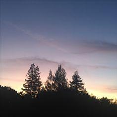 Sunset in Walnut Creek, CA