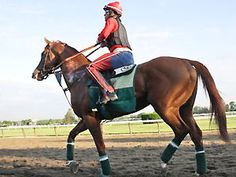 May 22, 2014 - 'Chrome' takes first steps on Belmont main track