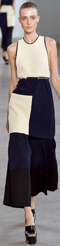 Calvin Klein Collection Spring 2015 Ready-to-Wear