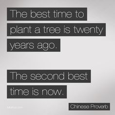 The Best Time to Plant a Tree is Twenty Years Ago. The Second Best Time is Now.