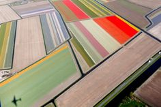 April 9, 2014. Aerial view of flower fields near the Keukenhof park, also known as the Garden of Europe, in Lisse, The Netherlands.  © Yves Herman/Reuters http://www.americanphotomag.com/photo-gallery/2014/12/best-photojournalism-year-2014?page=12