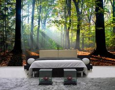 Beautiful Forest Jungle Tree Wall Murals Stickers for Modern Bedroom Decorating Designs Ideas