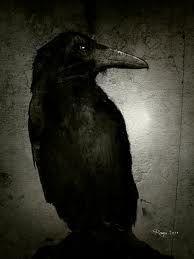 Holy crow!