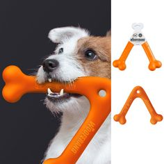 Wooferang helps you practice your boomerang skills with the help of your best friend. Made of vivid orange reinforced rubber.