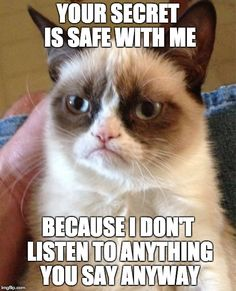 Grumpy Cat | YOUR SECRET IS SAFE WITH ME BECAUSE I DON'T LISTEN TO ANYTHING YOU SAY ANYWAY | image tagged in memes,grumpy cat | made w/ Imgflip meme maker